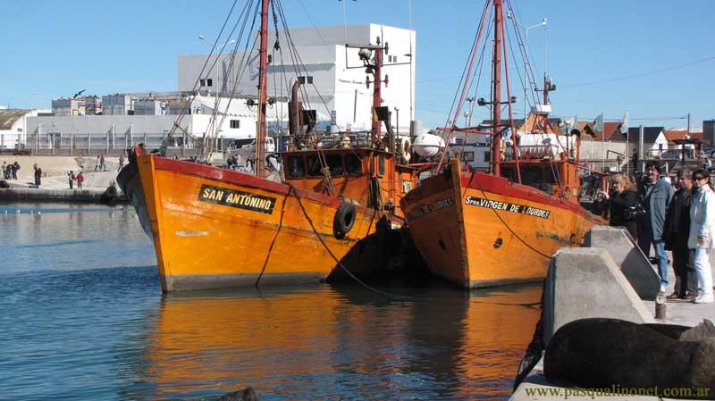 Barcos-800w