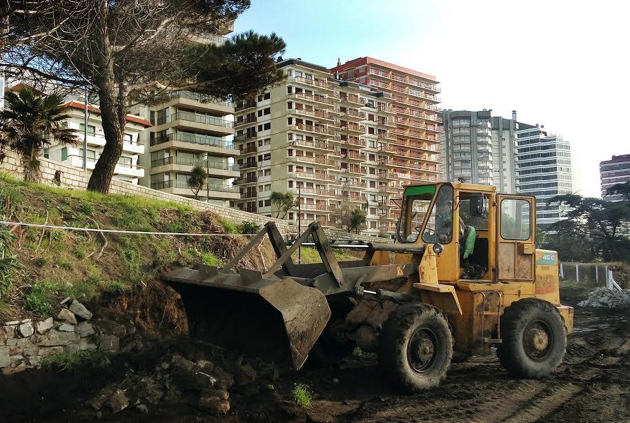 Trabajan para poner en valor el vivero de playa grande for Viveros en la plata