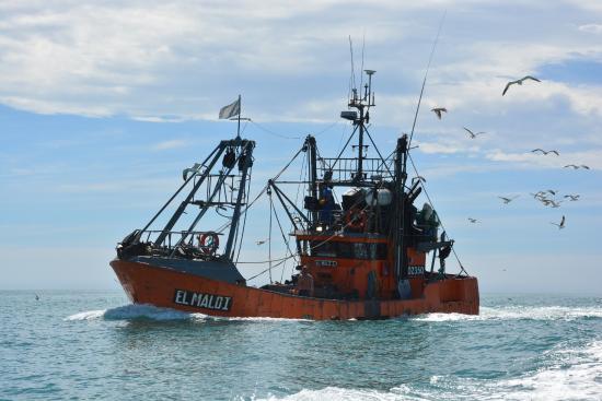 Naufragó un buque pesquero y rescataron a sus siete tripulantes