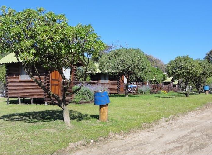 Una imagen del interior del camping El Durazno.
