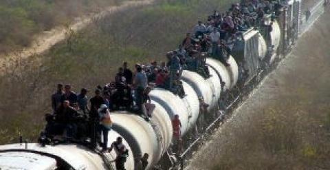 tren-carga 3