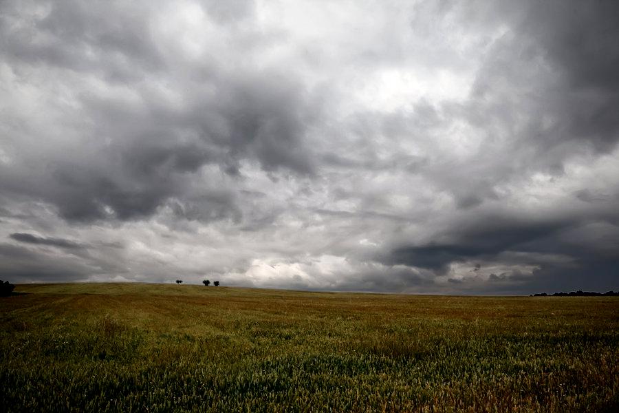 """Fenómeno de """"El Niño"""": claves para entender cómo funciona"""