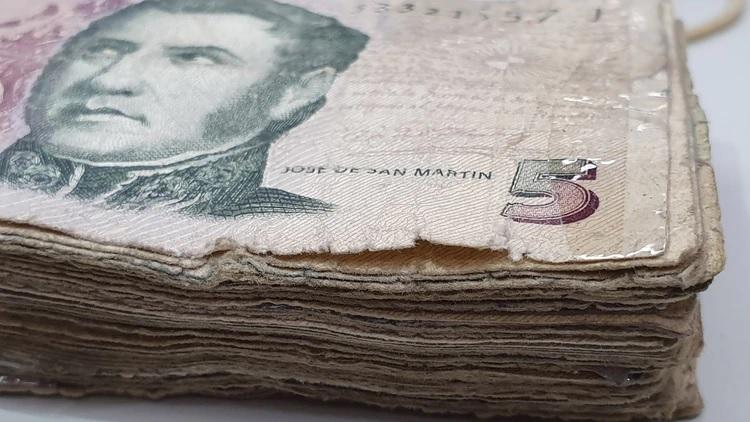 Sacarán a los animales de los billetes: ¿qué los reemplazará?