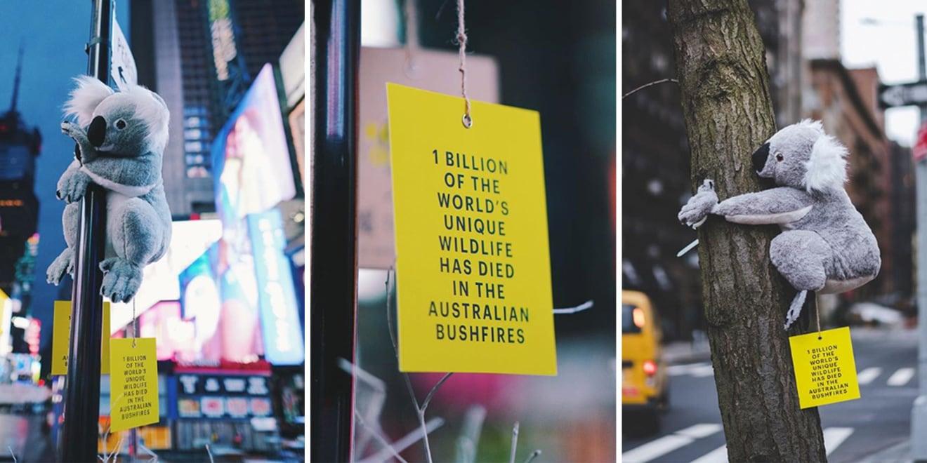 stuffed-koalas-nyc-donations-PAGE-2020