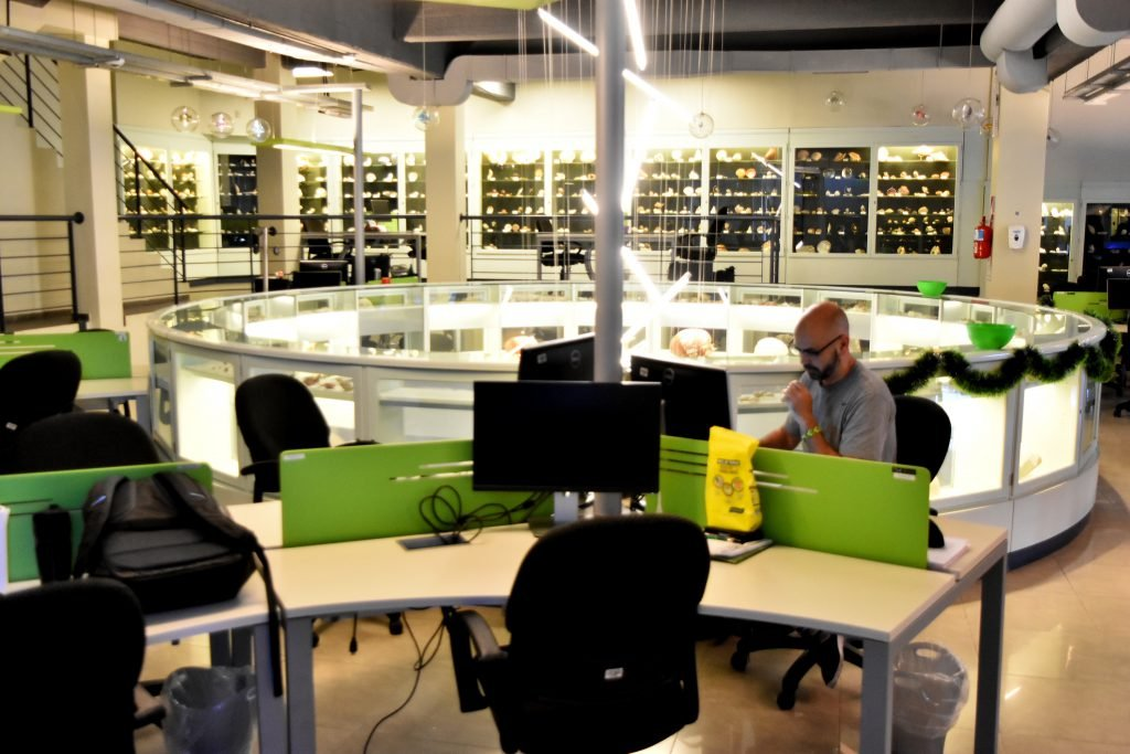 En las oficinas del primer piso se mantiene la colección de caracoles de mares de todo el mundo originada por Benjamín Sisterna. FOTO: Mauricio Arduin.